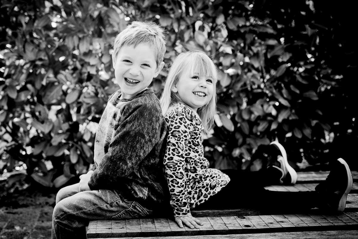 Portrætter af søskende