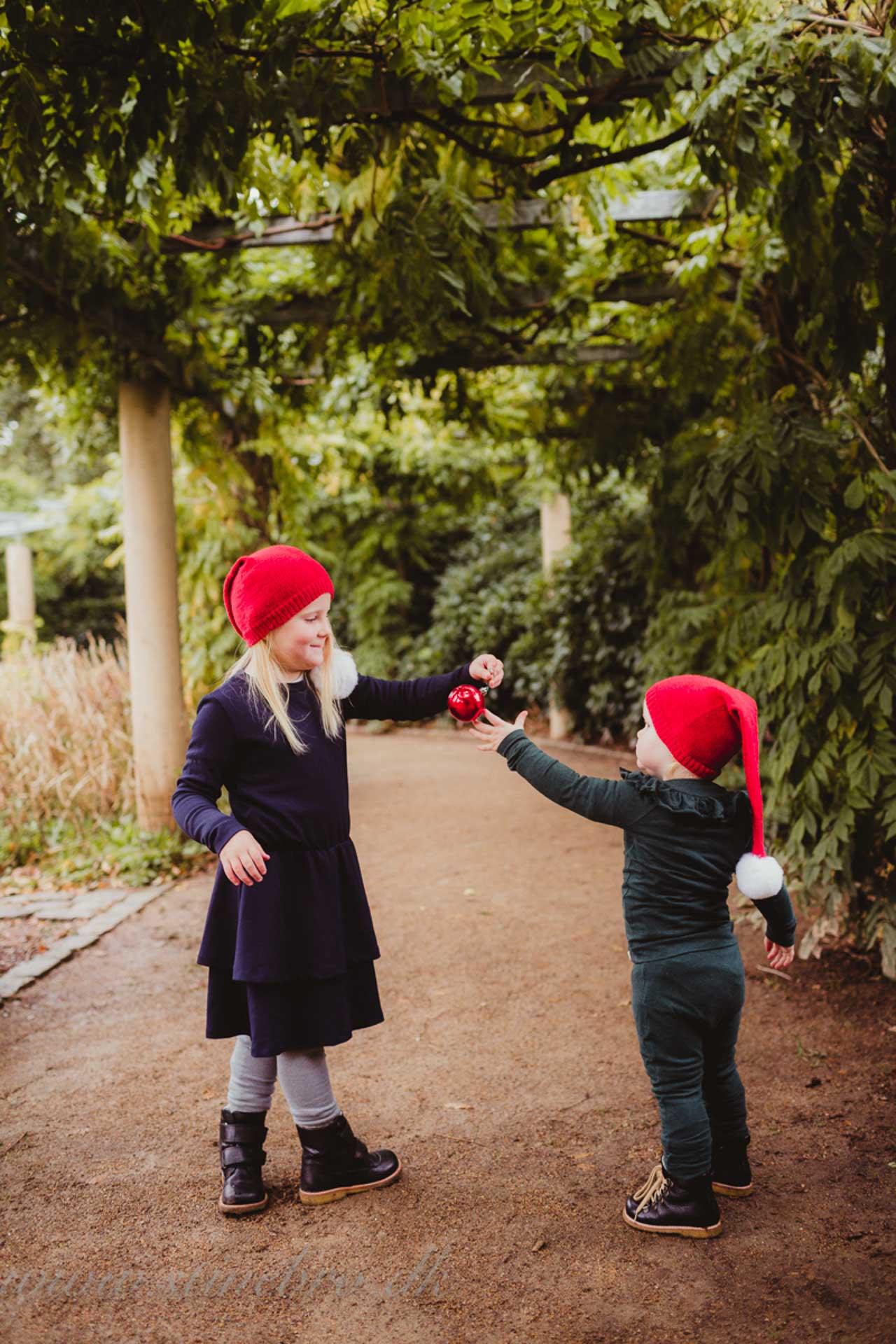 børnefotografering, familiefotografering